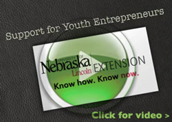 Support for Youth Entrepreneurs